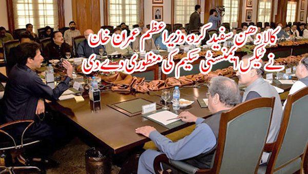 کالا دھن سفید کرو، وزیراعظم عمران خان نے ٹیکس ایمنسٹی سکیم کی منظوری دے دی