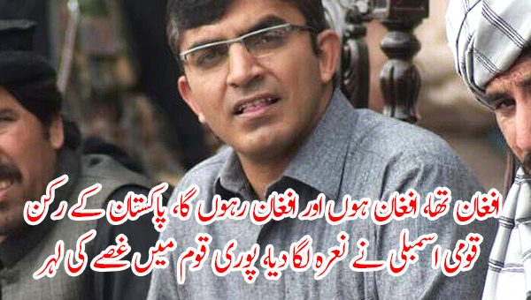 افغان تھا، افغان ہوں اور افغان رہوں گا، پاکستان کے رکن قومی اسمبلی نے نعرہ لگا دیا، پوری قوم میں غصے کی لہر