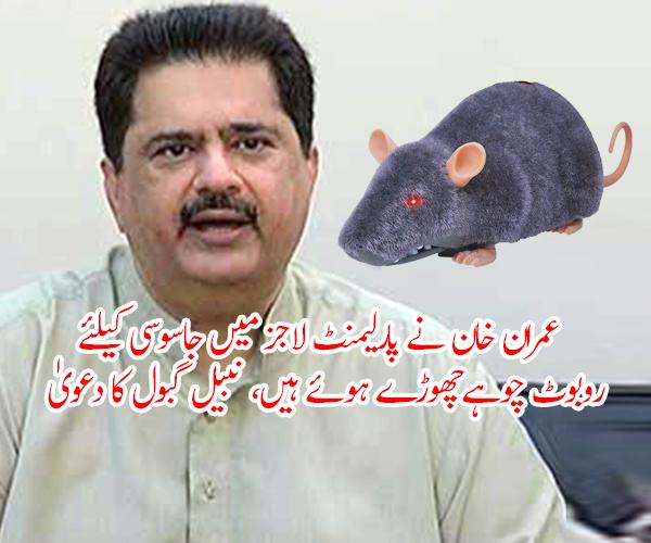عمران خان نے پارلیمنٹ لاجز میں جاسوسی کیلئے روبوٹ چوہےچھوڑے ہوئے ہیں، نبیل گبول کا دعویٰ