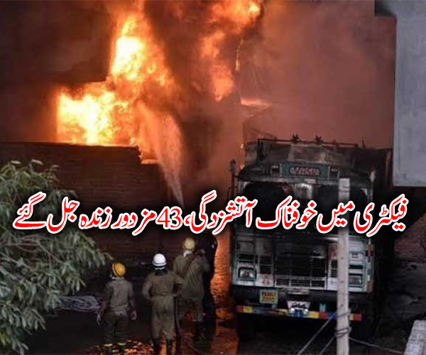 فیکٹری میں خوفناک آتشزدگی، 43مزدور زندہ جل گئے