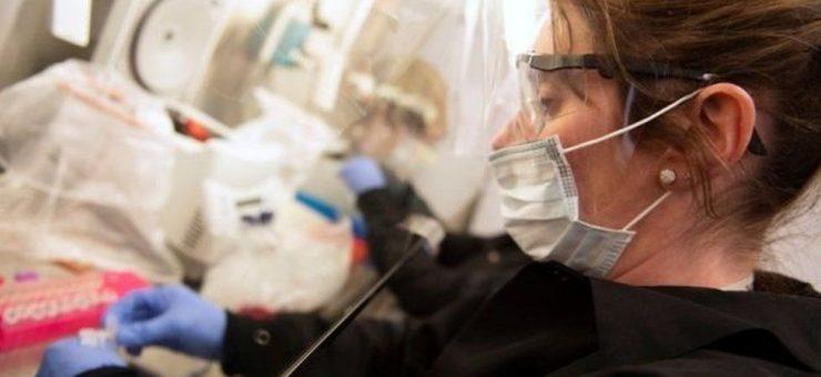 کرونا سے صحتیاب افراد کا پلازمہ دو سو شدید متاثرین کے علاج کیلئے استعمال کرنے کا فیصلہ