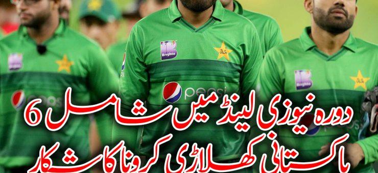 دورہ نیوزی لینڈ میں شامل 6 پاکستانی کھلاڑی کرونا کا شکار