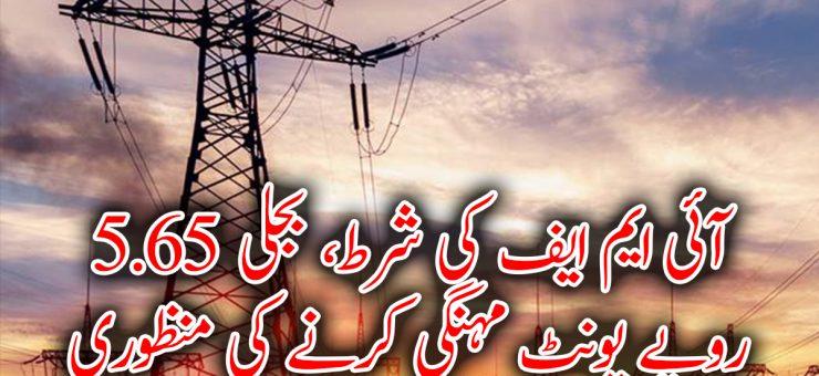 آئی ایم ایف کی شرط، بجلی 5.65 روپے یونٹ مہنگی کرنے کی منظوری